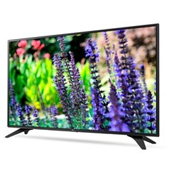 "Коммерческий Телевизор LG 32"" 32LV340C - фото 14721"