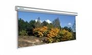 "[10130230] Экран Projecta Master Electrol 300x400см (197"") Matte White"