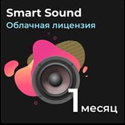 Smart Sound Воспроизведение аудио и управления фоновыми звуками.  Подписка на 1 месяц